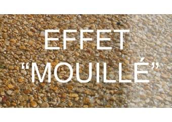 "OLEO PROTEC-Protecteur sol, effet ""mouillé"""
